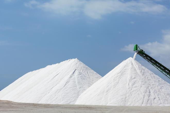 GC Rieber Salt