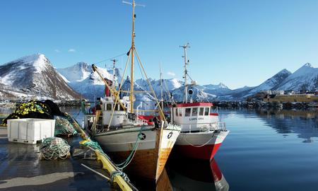 Fiskeri og Næringsmiddel