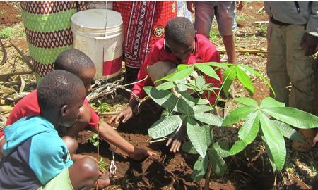 Barn ved Gabriellasenteret lærer å plante avocadotrær.